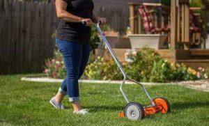 American Lawn Mower 1204-14 14-Inch 4-Blade Push Reel Lawn Mower